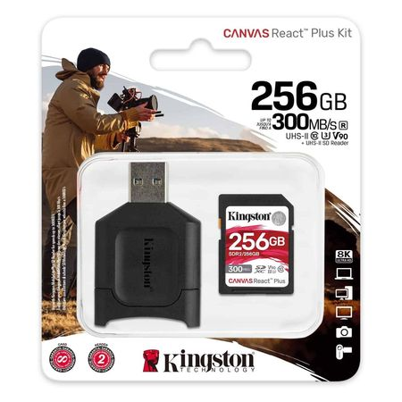 Kingston MLPR2/256GB bij CDM-iT